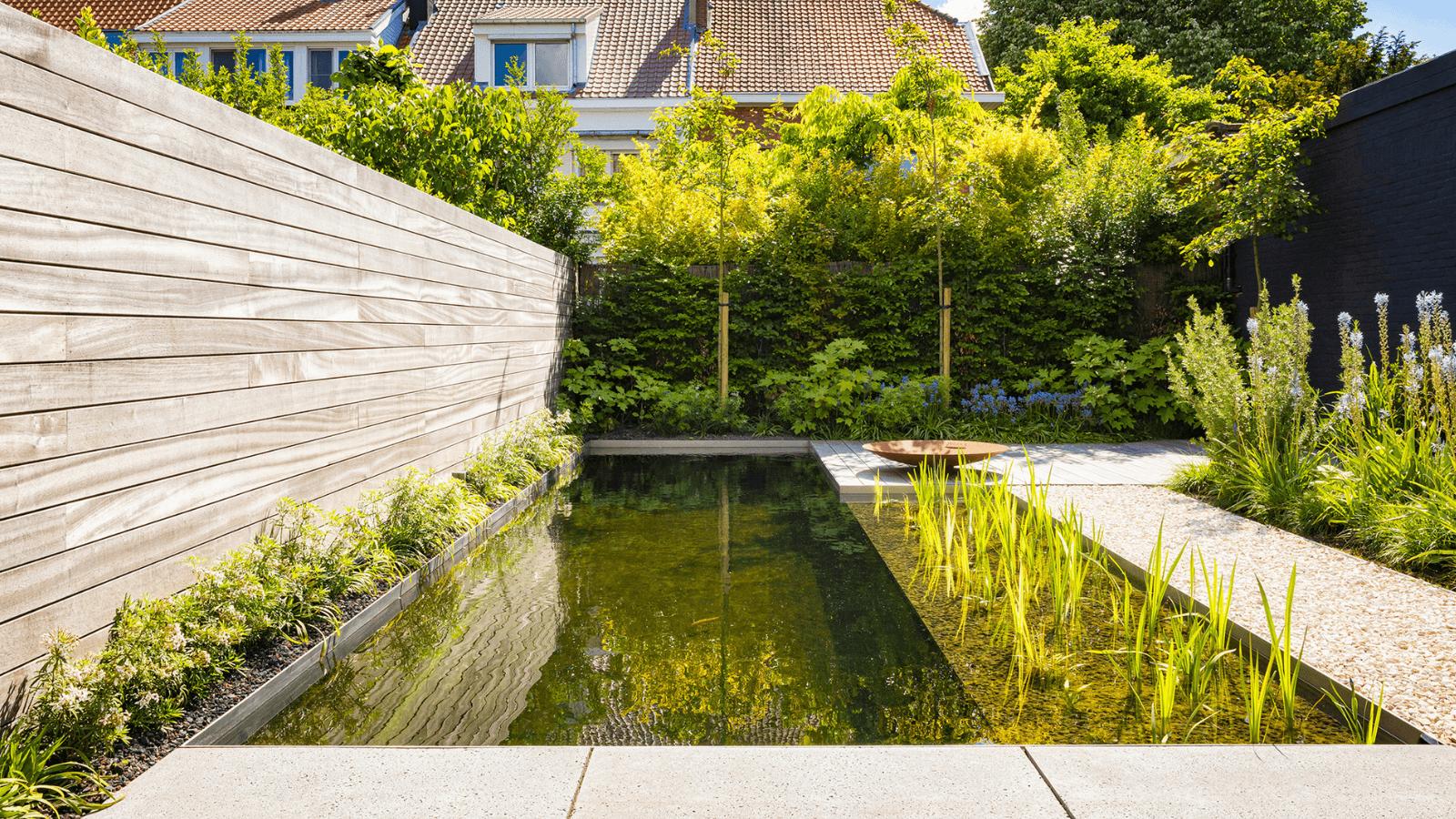 Zwemvijver in Mortsel