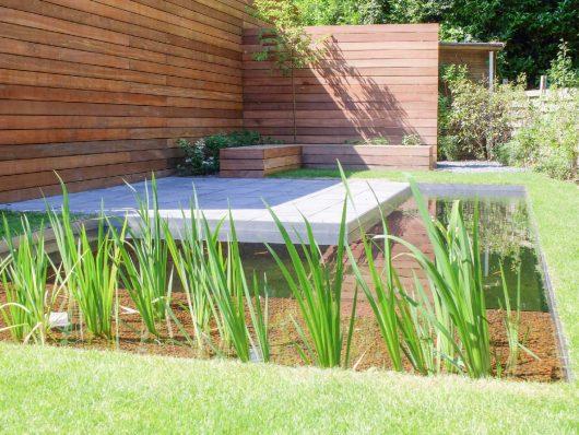 tuin met terras en zwemvijver